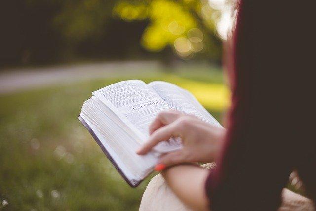 新人薬剤師が読むべき本3冊